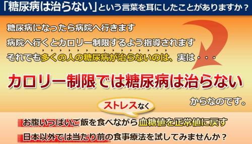 14日間糖質制限プログラム.jpg